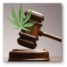 Gavel and marijuana leaf.